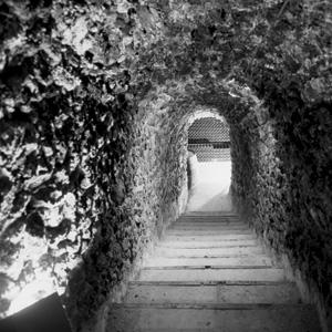 vieille_cave_nb